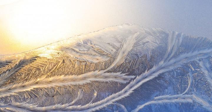 frost- icebar dubai