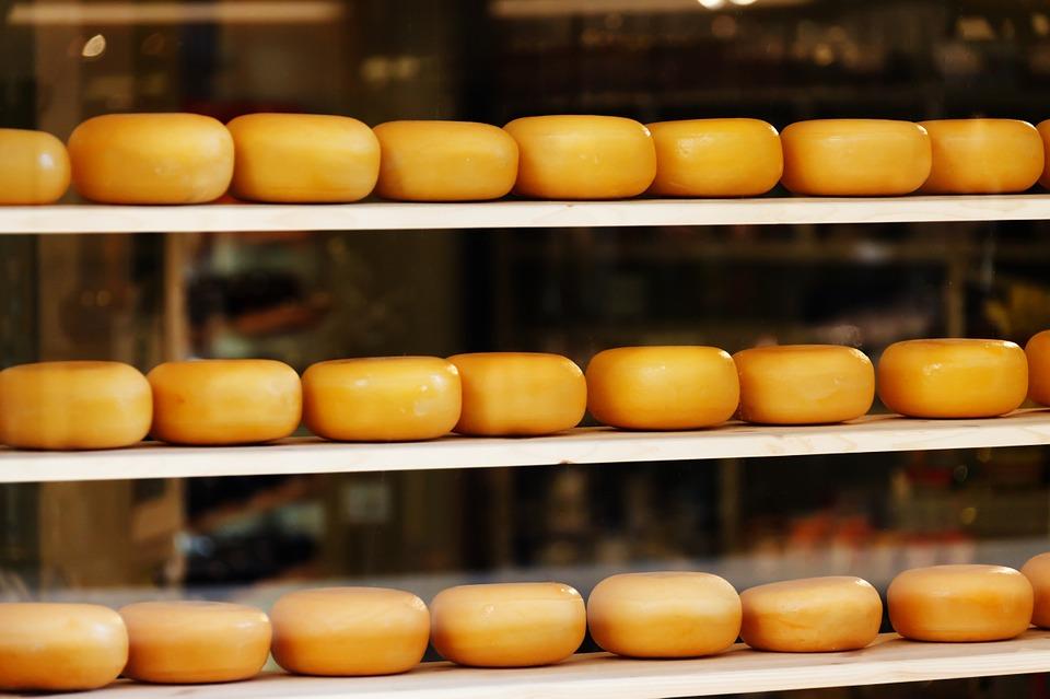 Käse aus der Niederlande