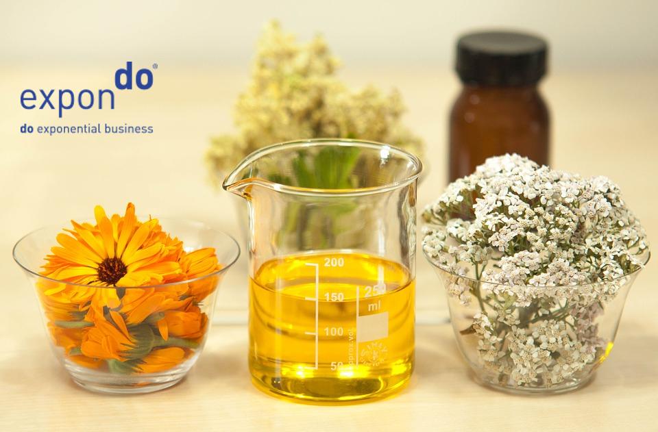 Welche Ölsorte zum Braten ? Rapsöl oder Olivenöl zum Braten