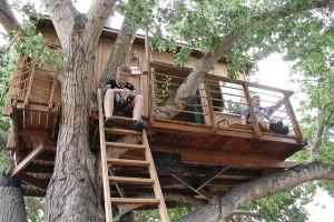 So bauen Sie Ihren Kindern ein Baumhaus